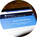 The WordPress CMS